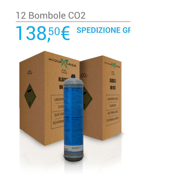 Scatola 12 bombole Co2 Usa e Getta 600gr